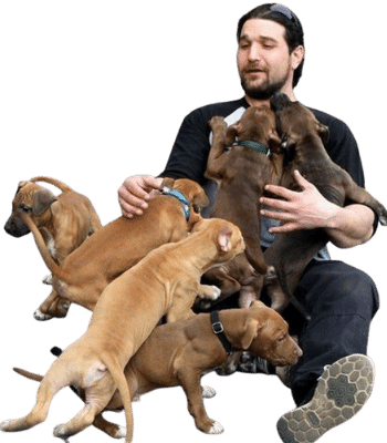 dog trainer montreal