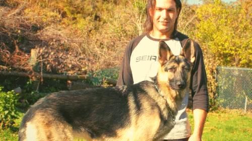 dog training - k9 training - dressage canin - Montreal / Vaudreuil
